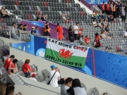 Wales v Russia 06